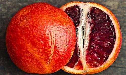 哪里买的资中血橙好/大千草莓采摘园地址/资中县大千种植农民专业合作社