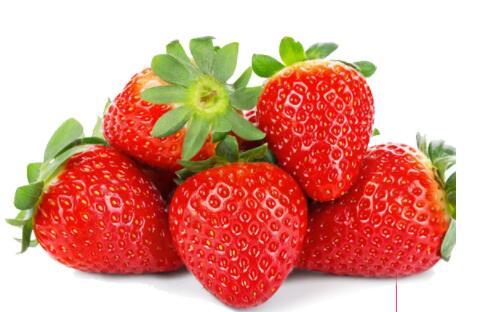 优质草莓批发哪里买/四川水果批发/成都好顺利商贸有限公司