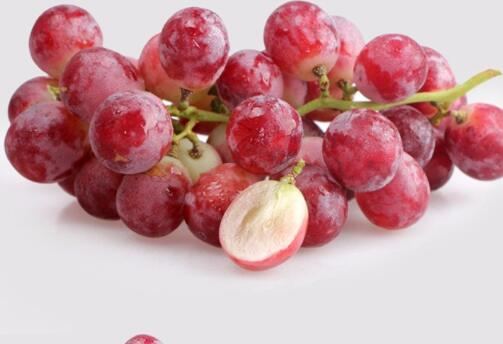 四川红提批发报价 优质草莓批发 成都好顺利商贸有限公司