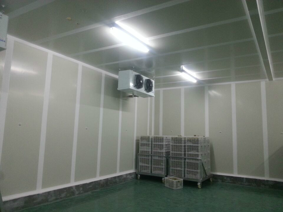 冻库维护 成都熟食保鲜柜哪里买 成都市绿峰制冷设备有限公司