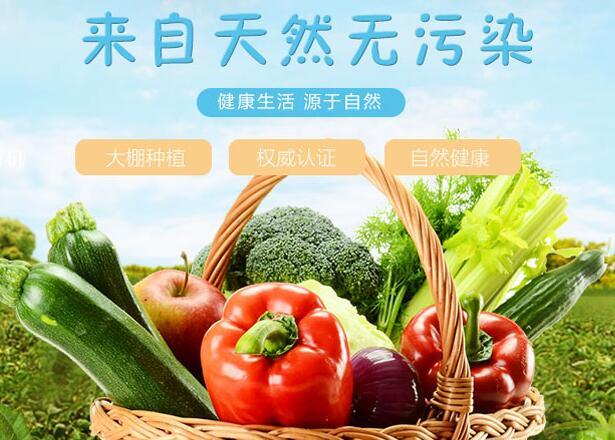 新都蔬菜批发_温室、大棚相关