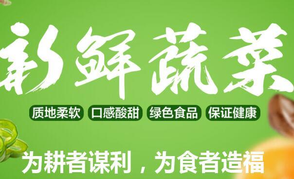 四川蔬菜代销公司_其他新鲜蔬菜费用