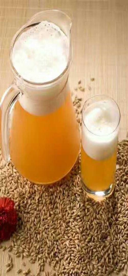 优质酒吧鲜啤批发/专业扎啤销售厂家/云南尹龙商贸有限公司