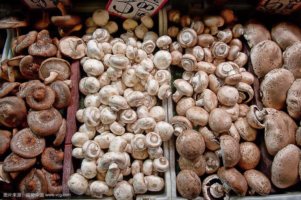 特征食用菌商城 中国化肥零售 云南盛衍种业无限公司