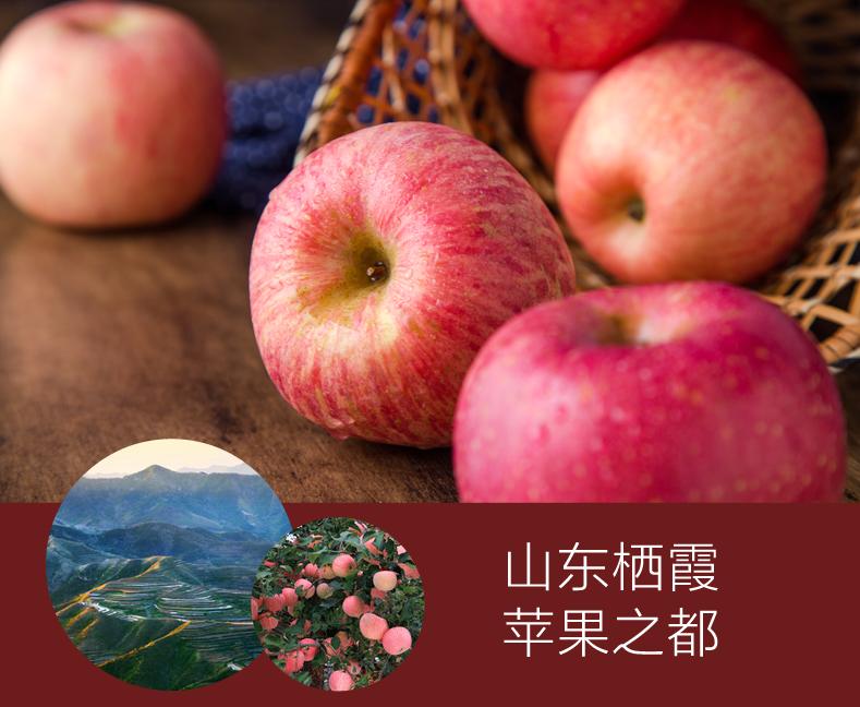 蒲江红富士苹果多少钱 成都苹果 成都宇昊电子商务有限公司
