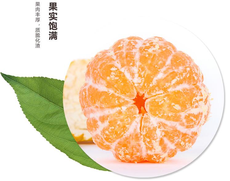 新鲜水果丑柑哪里买-微商红心猕猴桃批发-成都宇昊电子商务有限公司