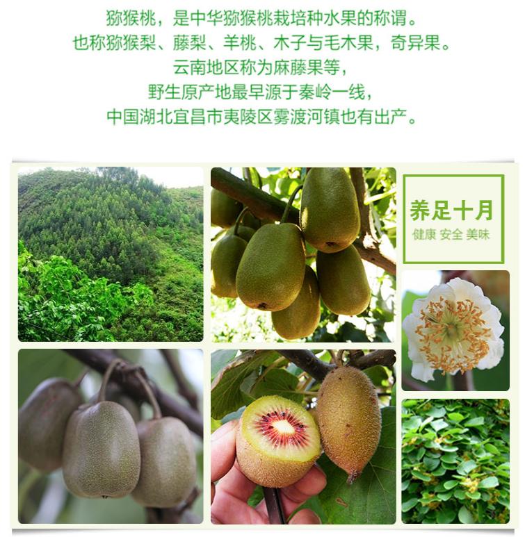 蒲江水蜜桃配送 微商沙瓤西瓜批发 成都宇昊电子商务有限公司