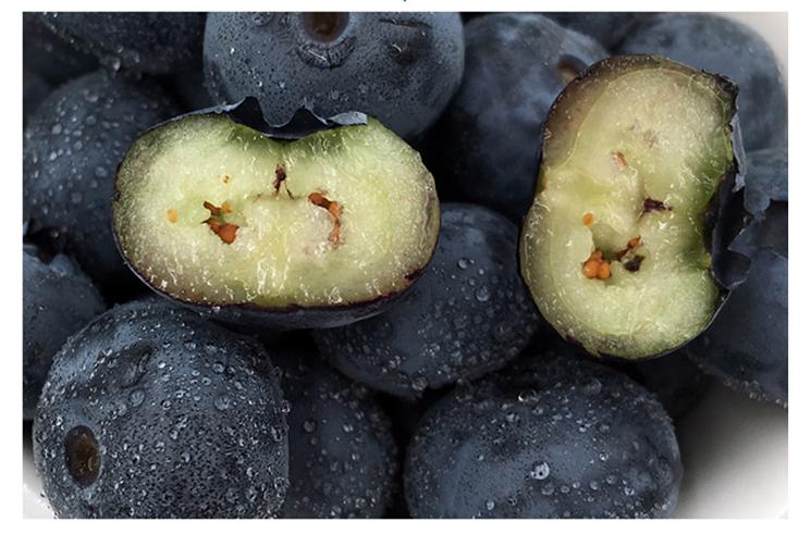 新鲜蓝莓哪里有卖/蒲江李子/成都宇昊电子商务有限公司