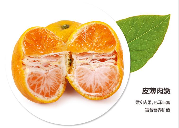 微商哈密瓜批发_成都新鲜水果配送_成都宇昊电子商务有限公司