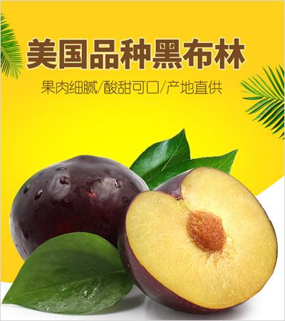 蒲江水果批发价格-丑柑批发-成都宇昊电子商务有限公司