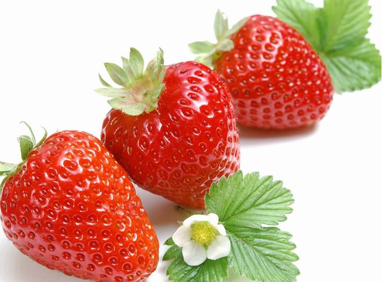 巧克力草莓/成都水蜜桃价格/成都宇昊电子商务有限公司