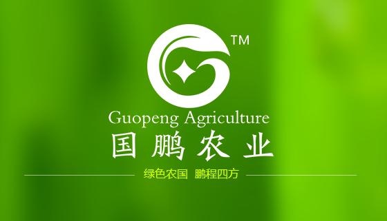 国鹏农业怎么样 西安农副产品供应商电话 陕西国鹏农业有限公司