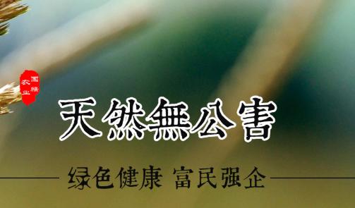 西安农副产品供应商官网_临沂网上批发城