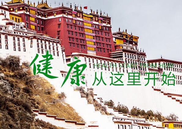 好的西藏大健康产业网怎么样_西藏理疗贴价格_西藏志容信息科技有限公司