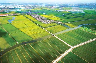 生态农业基地_环球在线