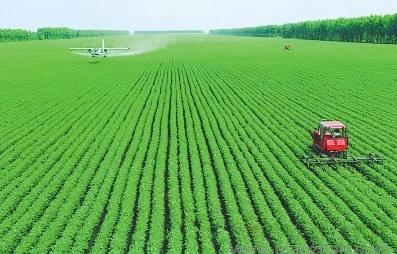 贵州有机蔬菜商城_豫贸网