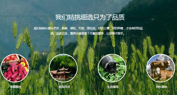 盛世康源生态农业网站_豫贸网