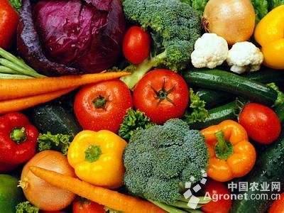 成都生态果蔬哪里买/盛世康源生态农业公司/四川盛世康源生态农业有限公司
