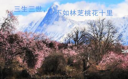好的林芝旅游景点推荐_豫贸网