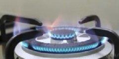 工業生物燃油技術_榮飛能源項目合作