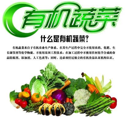 优质有机蔬菜_众加商贸网