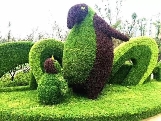 广场绿雕植物_华夏玻璃网