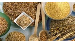 进口粮油加工_进口其他粮食价格