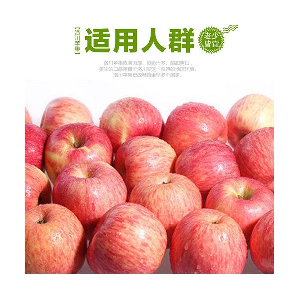 洛川苹果多少钱_91采购网
