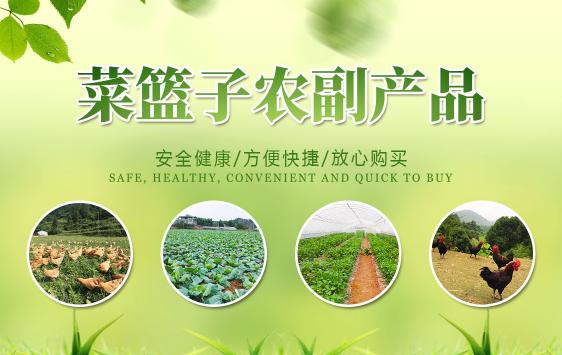 生鲜配送哪家好_专业农业平台-深圳市菜篮子农副产品有限公司重庆分公司