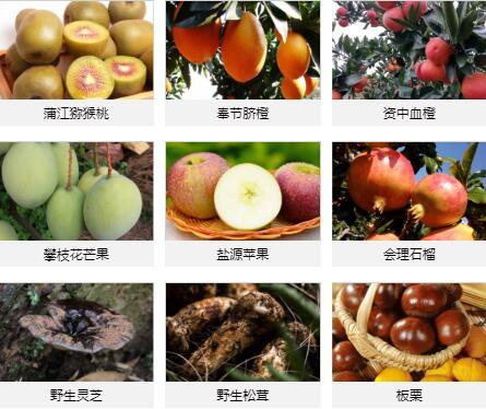 大凉山特产_广东特产有哪些相关-成华区奇珍异果水果经营部