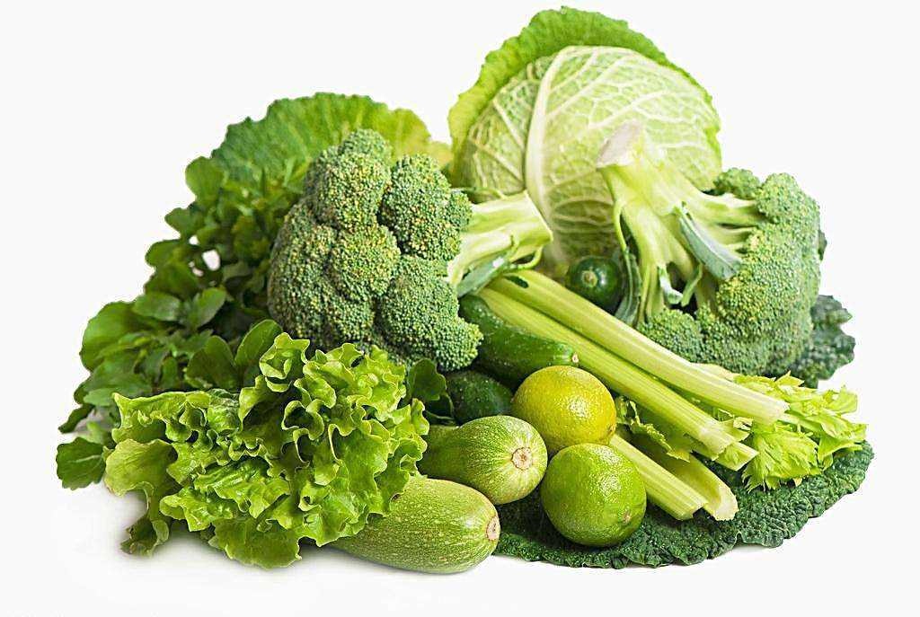 有机蔬菜哪家好_全球触摸屏网