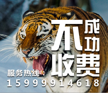 中山清债公司_360集讯
