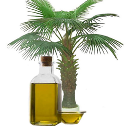 棕榈油价格_其他食用油哪家好