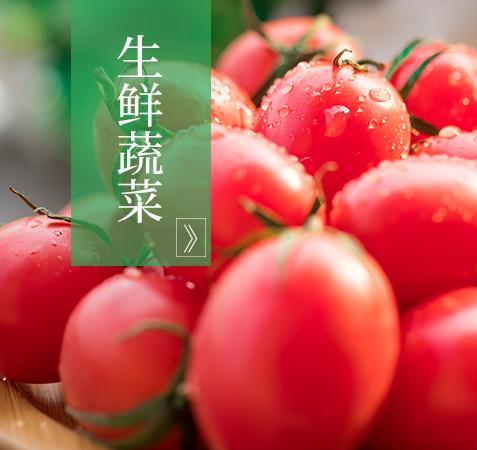 生鲜蔬菜哪家好_叶菜类相关-甘谷勤英生态绿化有限公司