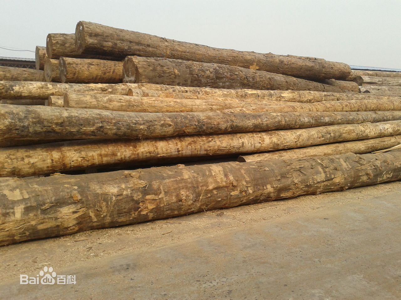 巴中南边松工程_南边松深度碳化木相干-武侯区木林源木业运营部