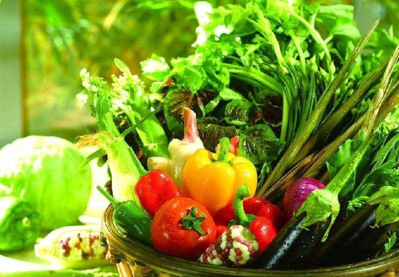 生态绿色蔬菜哪里有_叶菜类相关-石柱土家族自治县润淑生态农业发展有限公司