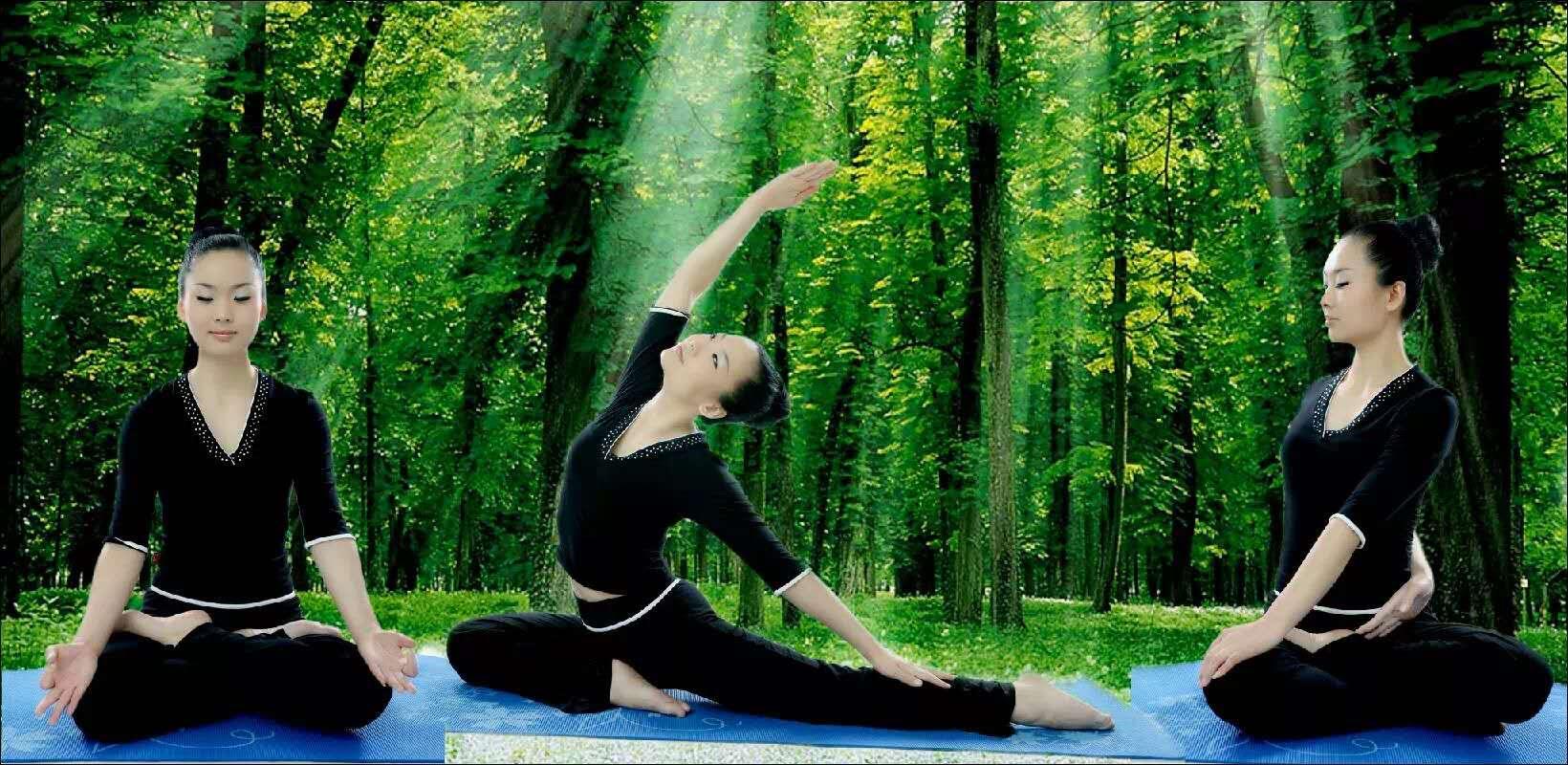 初级瑜伽瘦身教学_简单其他教育、培训