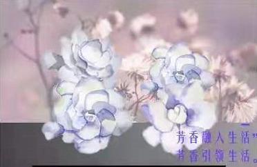 芳香展举办地址_中国芳香展相关-谊和永邦北京会展有限公司