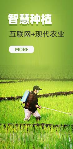 我们推荐中国智慧种植_智慧种植有什么好处相关-遵义森宏农业科技有限公司
