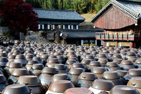 四川酱缸厂家_成都陶瓷价格