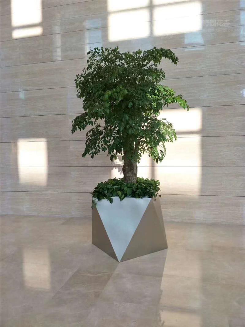 园林绿植销售电话_销售绿植相关-北京九州祥云园林绿化有限公司