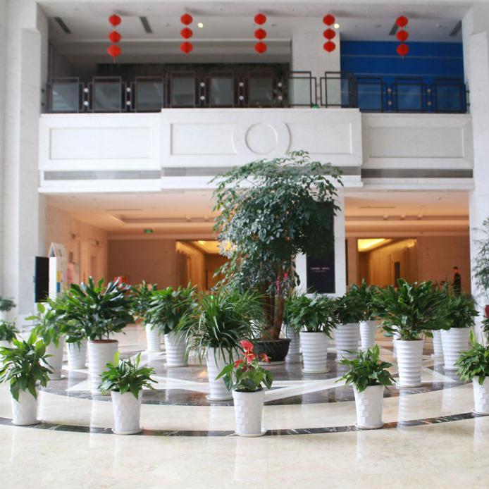 绿化养护价格_详细绿化工程方案-北京九州祥云园林绿化有限公司