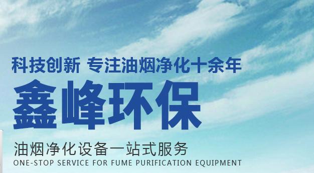 单位食堂油烟净化器_保丽洁其他空气净化装置厂家