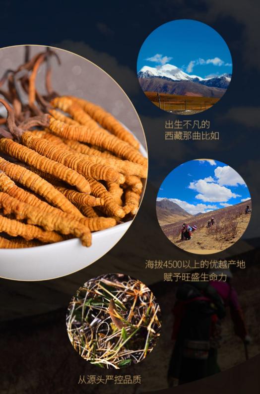 手工拉萨特产供应_手工商务服务-西藏洪兵净化设备有限公司