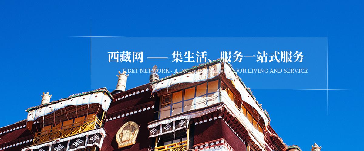 专业汽车维修租赁_维修工具车相关-西藏洪兵净化设备有限公司