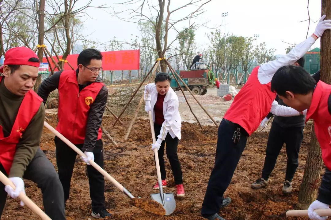 主题植树去哪里_团队活动-北京亦友文化发展有限公司