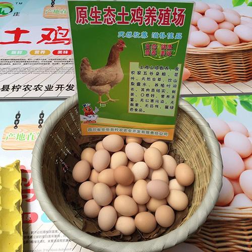 好的农产品公司_农产品价格相关-安岳县柠农农业开发有限责任公司