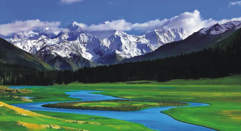 西藏健康产业门户网_西藏-西藏布瑞吉祥实业有限公司