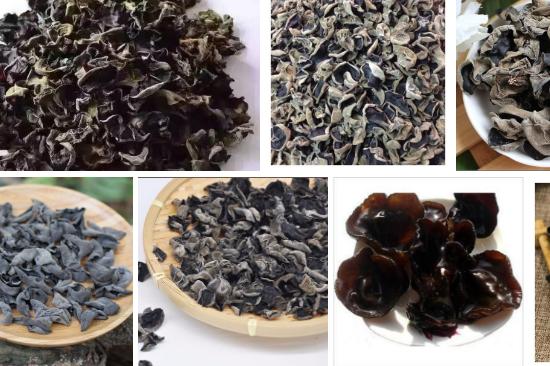 我们推荐精品黑木耳市场价_ 黑木耳相关-广南县富仁中药材种植农民专业合作社