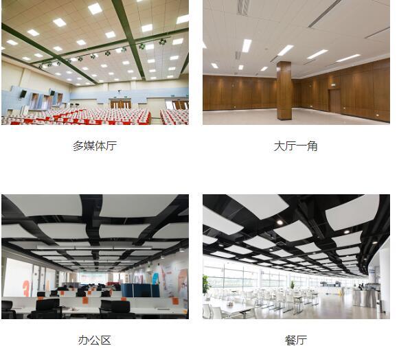 想要阿姆斯壮金属天花多少钱_软膜天花相关-郑州市百年胜达新型建材有限公司